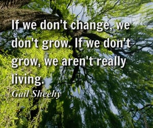 change, growth, and living image