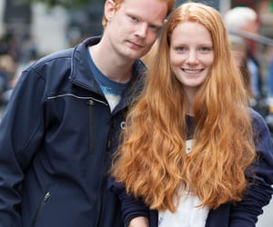 copper, ginger, and holland image