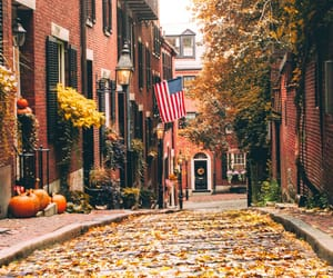 autumn, street, and tumblr image