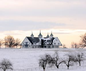 scenery, season, and winter image