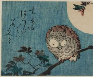 animal, blue, and owl image