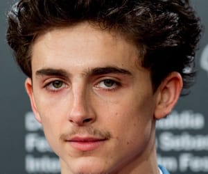 beautiful boy, call me by your name, and elio image