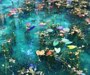 colores, maravilla, and naturaleza image