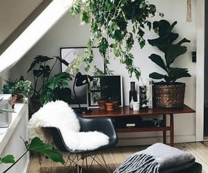 Living Room Plant Design
