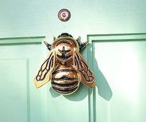 bee, doors, and house image