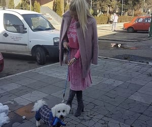 barbie, puppy, and barbiestyle image