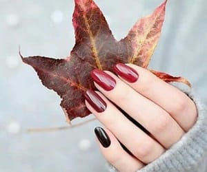 nails, autumn, and red image