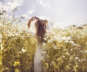 travel, white, and field image