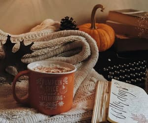 autumn, coffee, and cozy image