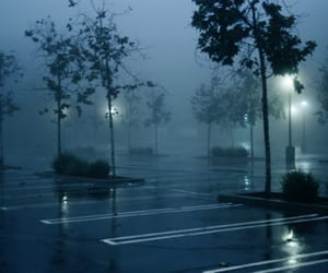 fog, night, and nature image