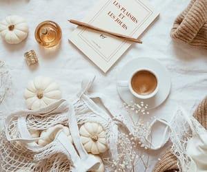 coffee and pumpkins image