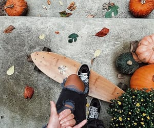 autumn, board, and brown image