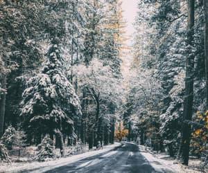 roadtrip in winter