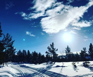 nature, snow, and norway image
