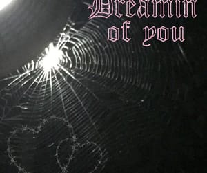 barb wire, dark, and Dream image