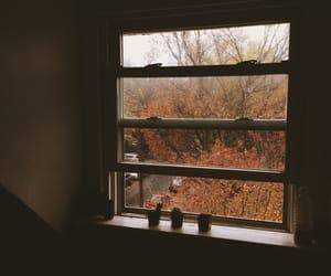 autumn, calm, and cozy image