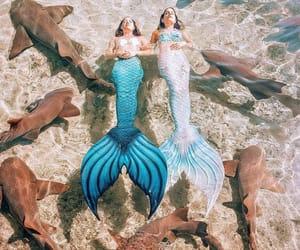 fantasy, fish, and magic image