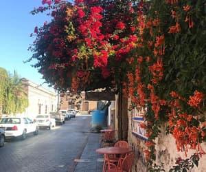 california, calles, and aviles image
