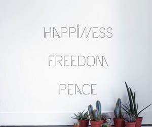 cactus, freedom, and happiness image
