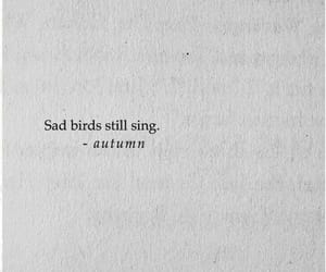 Sad birds still sing. Sad birds still fly...
