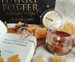 candle, harry potter, and leaves image