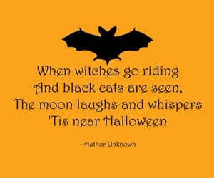 Halloween, quote, and bat image
