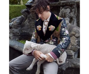 Harry Styles, gucci, and fashion image
