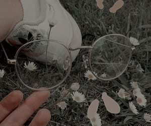 aesthetic, flower, and glasses image