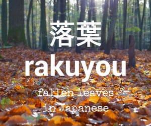 japanese, language, and learn image