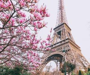 باريس, برج ايفل, and جُمال image