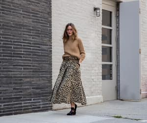 animal print, fall, and leopard image