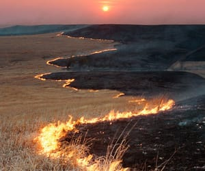 fire, nature, and sunset image