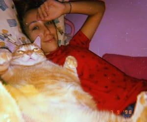 garfield, huji, and sleep image