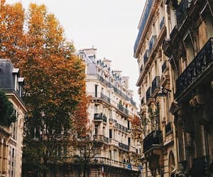 autumn, city, and building image