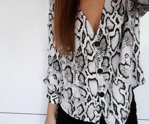 shirt and snakeskin image