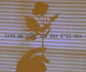 Lyrics, youngblood, and 5sos image