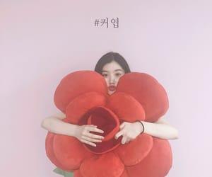 k-pop, pledis family, and produce 101 image
