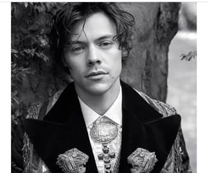 gucci, style, and Harry Styles image