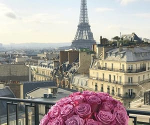 flower, view, and travel image