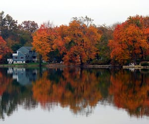 autumn colors, landscape photography, and nature photography image