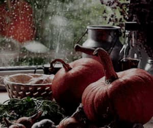 autumn, gif, and fall image