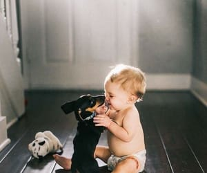 baby, dog, and style image