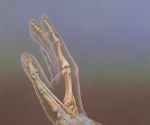 hand, bones, and art image