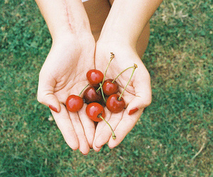 cherry, photography, and vintage image