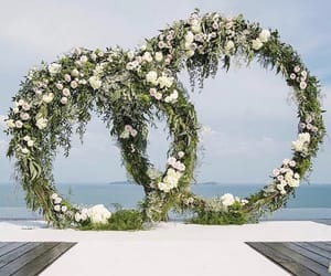 flowers, white, and venue image