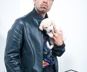 sebastian stan and dog image