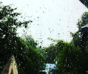 rain, rain drops, and trees image