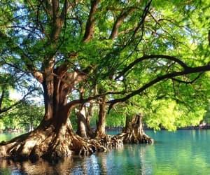 lago, michoacan, and el.catrin image