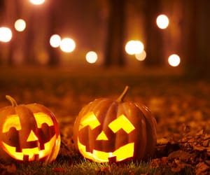 costumes, Halloween, and lights image