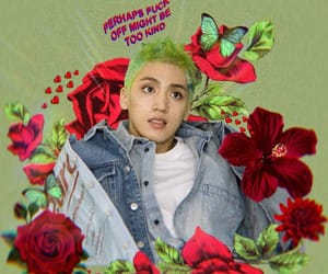 boy, flower, and green image